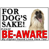 Afghan Hound BE-AWARE Dog Safety Sgn 1